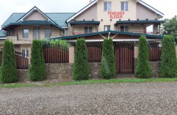 Accommodation Almaș, Alessia Guesthouse