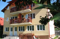 Accommodation Ciungetu, Remmar Vila