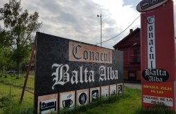 Cazare Bordeasca Nouă cu Vouchere de vacanță, Conacul Balta Alba