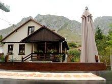 Accommodation Tomnatec, Vajda Adriana Guesthouse