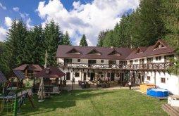 Accommodation Trăisteni, Conacul Dascalu Guesthouse
