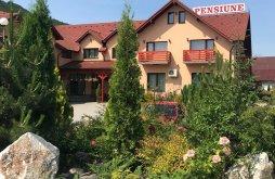 Cazare Bistrița Bârgăului cu tratament, Pensiunea Călimani