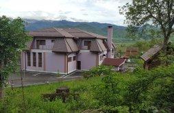 Panzió Oltfelsősebes (Sebeșu de Sus), Osencuta Panzió