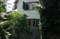 Villa Alsóegregy (Românași), Vlasinilor Villa