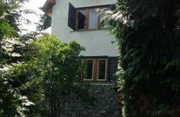 Villa Iaz, Vlasinilor Villa