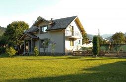 Accommodation Straja, Dranița Vacation Home