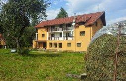 Apartman Kisvist (Viștișoara), Elena Panzió