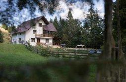 Guesthouse Pădureni, Iacoban Guesthouse