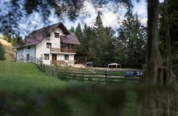 Guesthouse Straja, Iacoban Guesthouse