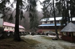 Accommodation Dobrești, Cerbul Tourist Complex