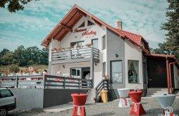 Cazare Pârtie de Schi Izvoare Maramureș, Pensiunea Madlene