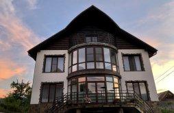 Apartament Vișeu de Jos, Vila Fan Confort