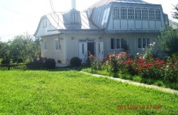 Accommodation Scobinți, Poenița Guesthouse