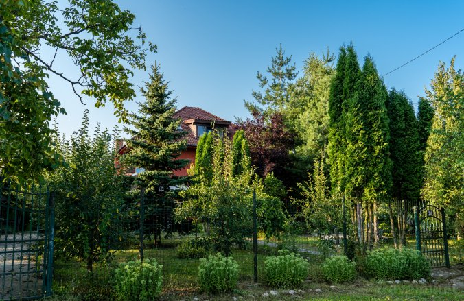 Vila FairyLand Valea Nandrii