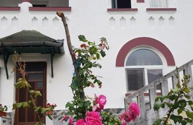 Ana Lăcrămioara Panzió Călimănești