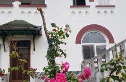 Apartament Tuțulești, Pensiunea Ana Lăcrămioara