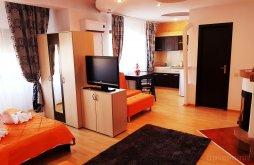 Apartament Ghiroda, Pensiunea Red Rose
