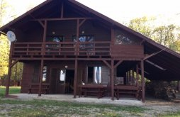 Accommodation Sălcioara (Mătăsaru), Lake Chalet