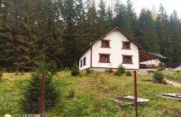 Kulcsosház Hănțești, Mugur Kulcsosház