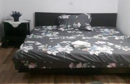 Accommodation Păușa, Yanis Vila