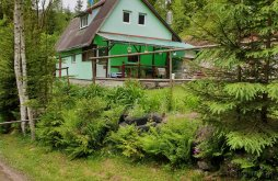 Szállás Gyilkos-tó közelében, Green House Kulcsosház