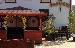 Hostel Dumitrești, Hostel Paducel