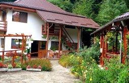 Szállás Cerbu, Voucher de vacanță, Vila Cașoca Panzió