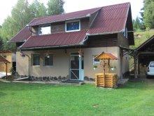 Accommodation Izvoare, Balázsi Chalet