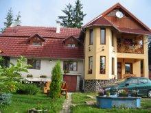 Casă de vacanță Bârgăuani, Casa Aura