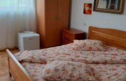 Accommodation Lipova, Faleza Guesthouse