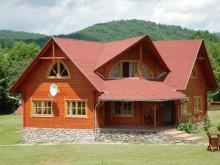 Accommodation Izvoru Mureșului, Balázs Guesthouse