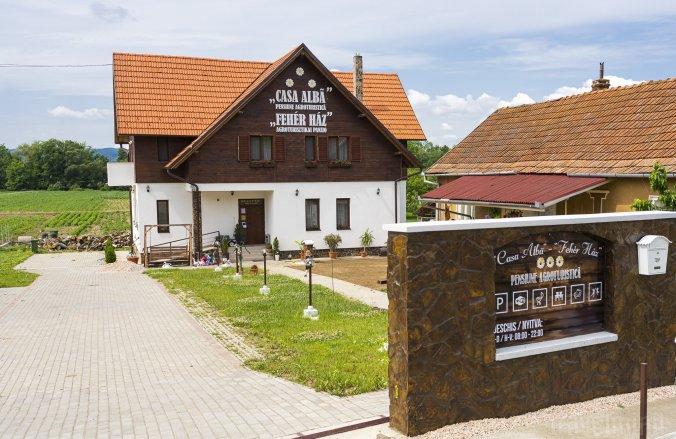 Fehér Ház Panzió Boghiș