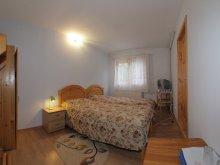 Accommodation Izvoru Berheciului, Tara Guesthouse