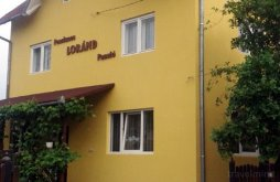 Accommodation Praid, Loránd Guesthouse