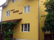 Accommodation Sovata, Tichet de vacanță, Loránd Guesthouse