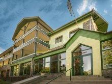 Hotel Barajul Zetea, Hotel Teleki