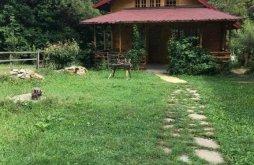 Chalet near Iulia Hasdeu Castle, S'ATRA Camping Chalet