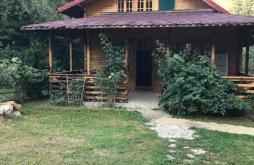 Cabană aproape de Mănăstirea Izvorul Tămăduirii, Cabana S'ATRA Camping