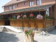 Accommodation Saciova, Botimi Guesthouse