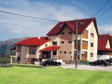 Accommodation Săulești, Paradis Guesthouse