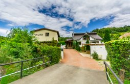 Vilă Țibana, Vila Casa cu Muri