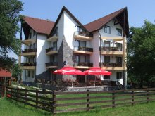 Villa Törcsvár (Bran), Alisa Villa