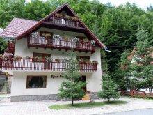 Accommodation Capu Piscului (Godeni), Raza Soarelui Guesthouse