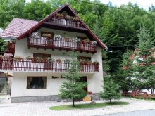 Accommodation Predeal, Raza Soarelui Guesthouse