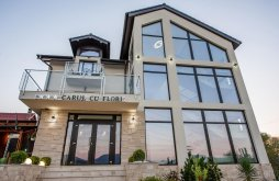 Accommodation Oravița, Carul cu flori Guesthouse