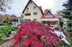 Accommodation Brebu Mânăstirei, Lis House