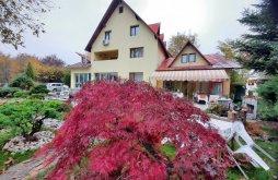 Accommodation Siliștea Dealului, Lis House