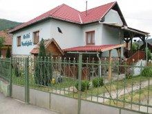 Casă de oaspeți Rudabánya, Casa de oaspeți Holló