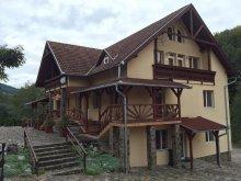 Szállás Székelypálfalva (Păuleni), Ilona Panzió