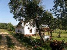 Accommodation Hegyhátszentjakab, Múltidéző Porta Guesthouse